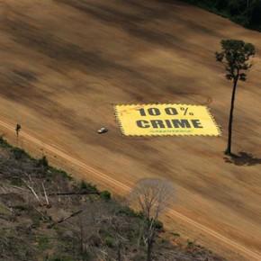 Greenpeace-Amazonia-deforestacion-crimen