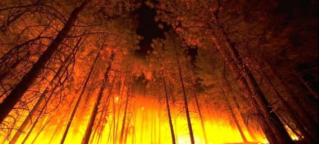 España arde en 2015 y no es por el calor